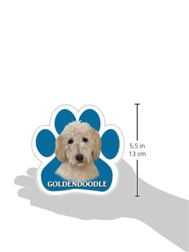 Goldendoodle-Car-Magnet-With-Unique-Paw-Shaped-Design-Measures-52-by-52-Inches-Covered-In-UV-Gloss-For-Weather-Protection-0-0