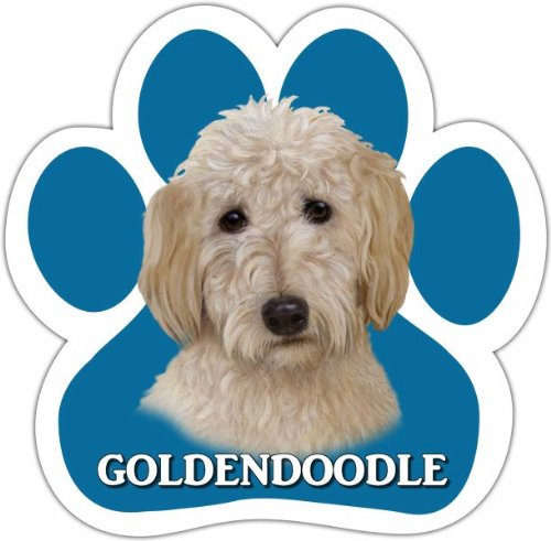 Goldendoodle-Car-Magnet-With-Unique-Paw-Shaped-Design-Measures-52-by-52-Inches-Covered-In-UV-Gloss-For-Weather-Protection-0