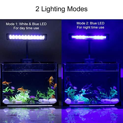 Hygger-Aquarium-Fish-Tank-Light-White-and-Blue-LEDs-Clip-on-Led-Clamp-Light-for-Aquarium-Lighting-with-Adjustable-Clip-Fits-on-Rimless-or-Black-Rim-Tank-0-0