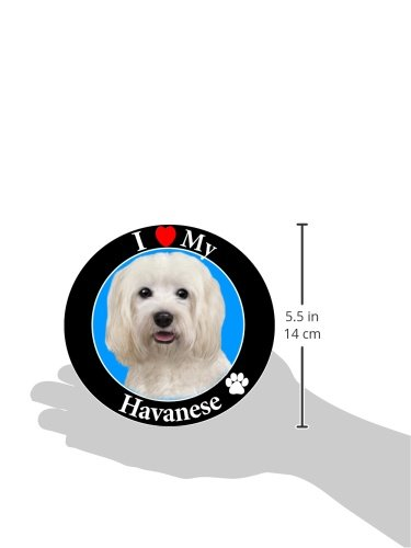 I-Love-My-Havanese-Car-Magnet-With-Realistic-Looking-Havanese-Photograph-In-The-Center-Covered-In-UV-Gloss-For-Weather-and-Fading-Protection-Circle-Shaped-Magnet-Measures-525-Inches-Diameter-0-0