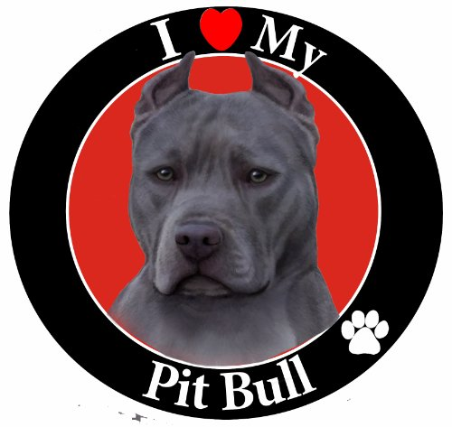 I-Love-My-Pit-Bull-Car-Magnet-With-Realistic-Looking-Blue-Pit-Bull-Photograph-In-The-Center-Covered-In-UV-Gloss-For-Weather-and-Fading-Protection-Circle-Shaped-Magnet-Measures-525-Inches-Diameter-0