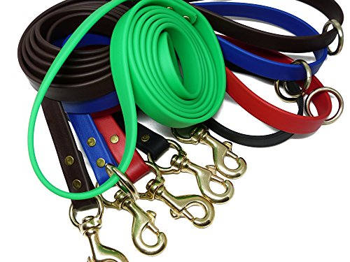 JimHodgesDogTraining-Gummy-Dog-Leash-Biothane-Dog-Training-Leash-Made-in-The-USA-6-Feet-Various-Sizes-Colors-0-0