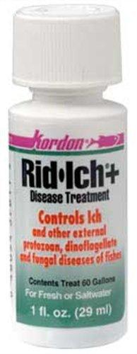 KORDON-37611-Rid-Ich-for-Aquarium-1-Ounce-0