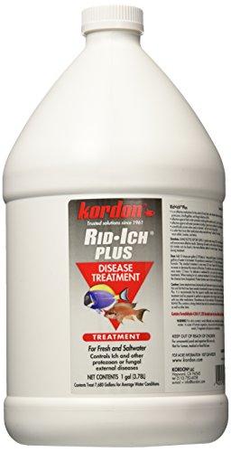 KORDON-37661-Rid-Ich-for-Aquarium-1-Gallon-0