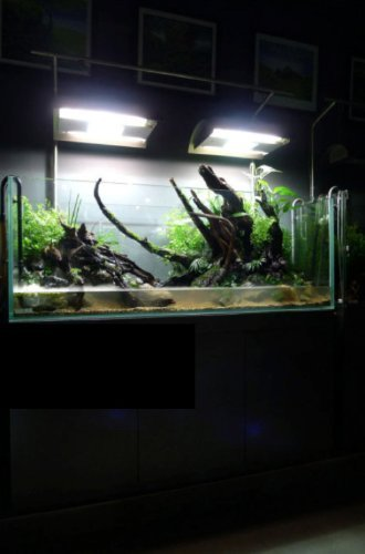 Landen-90P-594-Gallon-Rimless-Low-Iron-Aquarium-Tank-3543-L–1969-W–1969-H-90cm-x-50cm-x-50cm-10mm-Thickness-111008-0-1