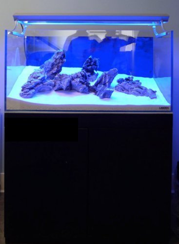 Landen-90P-594-Gallon-Rimless-Low-Iron-Aquarium-Tank-3543-L–1969-W–1969-H-90cm-x-50cm-x-50cm-10mm-Thickness-111008-0-2