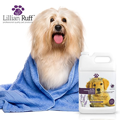 Lillian-Ruff-Professional-Dog-Shampoo–Concentrated-Dog-Shampoo-with-Aloe–Tear-Free-Lavender-Coconut-Scent–Soothe-Cleanse-Normal-to-Dry-Itchy-Sensitive-Skin–Made-in-USA-0-2