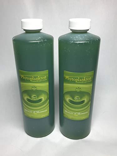 Live-Marine-Phytoplankton-2-16oz-Bottles-0-0