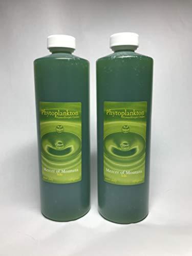 Live-Marine-Phytoplankton-2-16oz-Bottles-0