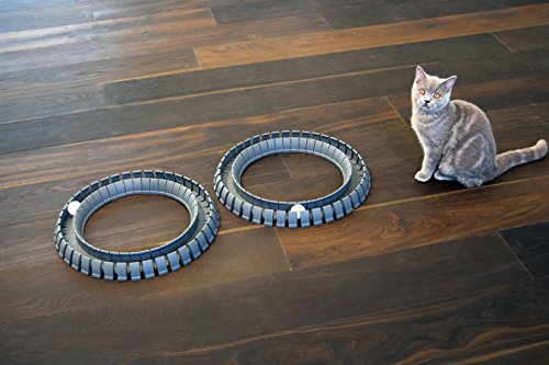 Magic-Cat-Track-and-Ball-Toy-for-kittens-pets-kitties-cats-0-0