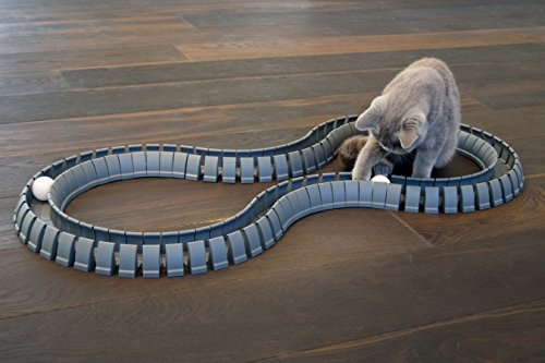 Magic-Cat-Track-and-Ball-Toy-for-kittens-pets-kitties-cats-0-1