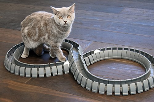 Magic-Cat-Track-and-Ball-Toy-for-kittens-pets-kitties-cats-0-2
