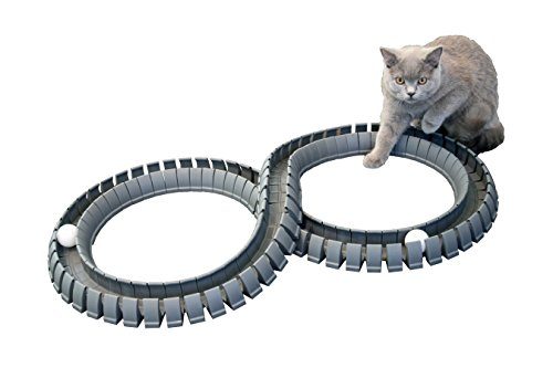 Magic-Cat-Track-and-Ball-Toy-for-kittens-pets-kitties-cats-0