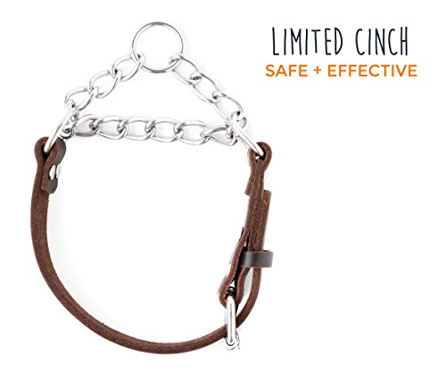 Mighty-Paw-Leather-Training-Collar-Martingale-Collar-Stainless-Steel-Chain-Premium-Quality-Limited-Chain-Cinch-Collar-0-0