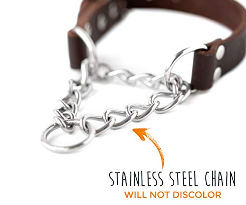 Mighty-Paw-Leather-Training-Collar-Martingale-Collar-Stainless-Steel-Chain-Premium-Quality-Limited-Chain-Cinch-Collar-0-1
