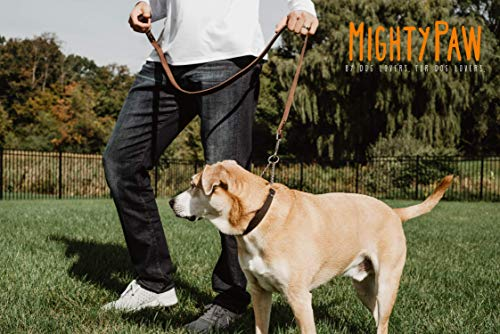 Mighty-Paw-Leather-Training-Collar-Martingale-Collar-Stainless-Steel-Chain-Premium-Quality-Limited-Chain-Cinch-Collar-0-2