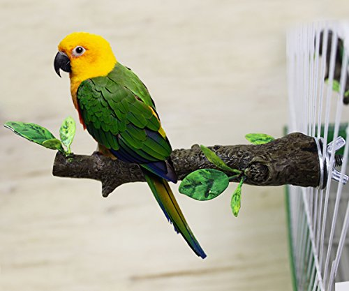 Mrli-Pet-Simulation-Branch-Bird-Perches-Stand-Birds-Cage-Supplies-Station-Perch-Small-Size-Parrot-Cockatiels-Lovebirds-Small-Parakeets-Parrotlets-Material-Stainless-Steel-Resin-Length-59inch-0
