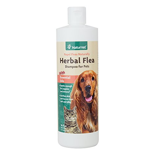 NaturVet-Herbal-Flea-Shampoo-with-Essential-Oils-for-Dogs-and-Cats-16-oz-Liquid-Made-in-USA-0