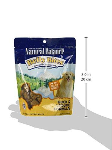 Natural-Balance-Belly-Bites-Semi-Moist-Treats-6-Ounce-Duck-And-Legume-0-0