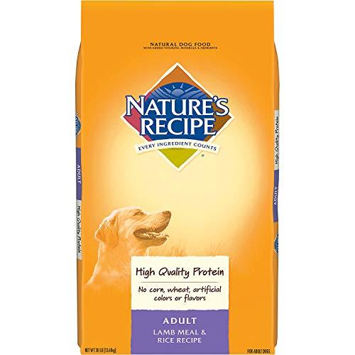 NatureS-Recipe-Adult-Dry-Dog-Food-Adult-Lamb-Meal-Rice-Recipe-0