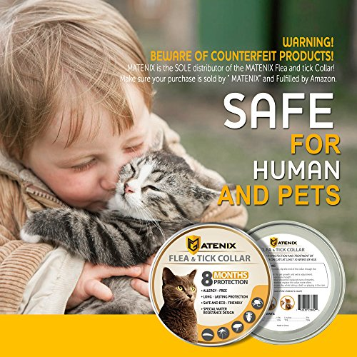 ONMOG-Flea-and-Tick-Prevention-Collar-for-Cat–Best-Flea-Collar-Repellent–8-Month-Protection–Environment-Friendly-with-Fully-Natural-Ingredients-0-0