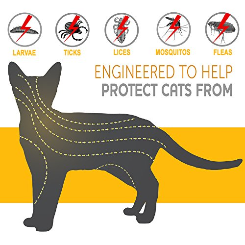 ONMOG-Flea-and-Tick-Prevention-Collar-for-Cat–Best-Flea-Collar-Repellent–8-Month-Protection–Environment-Friendly-with-Fully-Natural-Ingredients-0-1