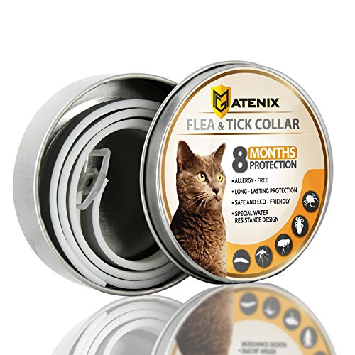 ONMOG-Flea-and-Tick-Prevention-Collar-for-Cat–Best-Flea-Collar-Repellent–8-Month-Protection–Environment-Friendly-with-Fully-Natural-Ingredients-0