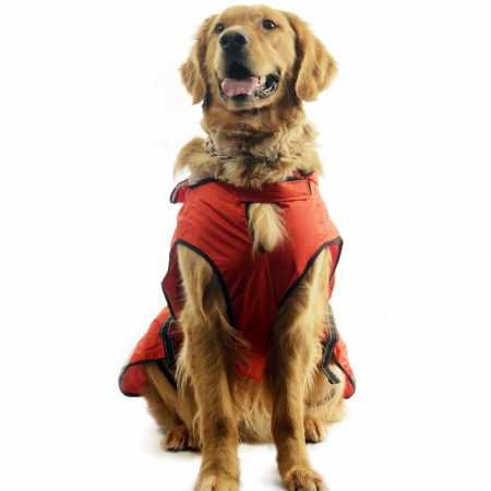 One-for-Pets-Safety-Hooded-Raincoats-16-Inch-Orange-Red-0