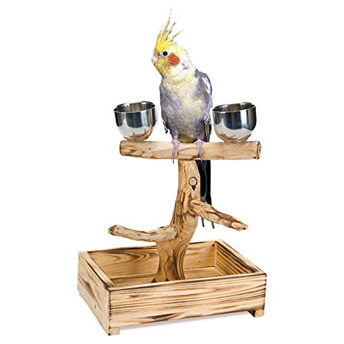 Penn-Plax-Bird-Life-Natural-Tree-Perch-0