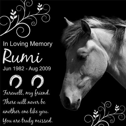 Personalized-Pet-Horse-Memorial-12×12-Engraved-Black-Granite-Grave-Marker-Head-Stone-Plaque-RUM1-0