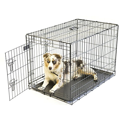 Pet-Champion-Deluxe-36-Inch-Folding-Portable-2-Door-Wire-Pet-Crate-Kennel-Large-Up-to-70-Pounds-0-0
