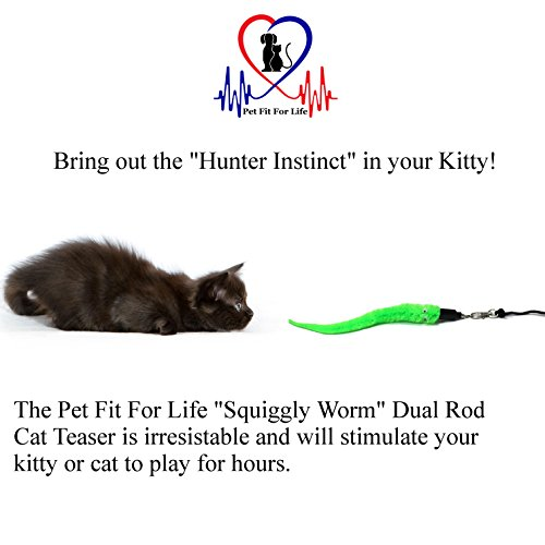 Pet-Fit-For-Life-5-Piece-Worms-Teaser-and-Exerciser-for-Cat-and-Kitten-Cat-Toy-Interactive-Cat-Wand-0-1