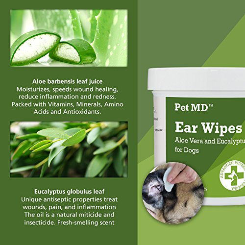 Pet-MD-Dog-Ear-Cleaner-Wipes-Otic-Cleanser-for-Dogs-to-Stop-Itching-Yeast-and-Mites-with-Aloe-and-Eucalyptus-100-Count-0-1