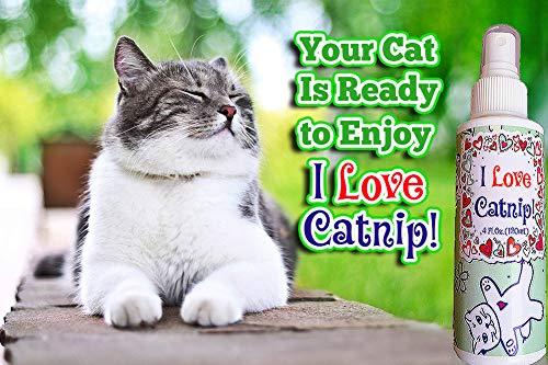 Pet-MasterMind-I-Love-Catnip-4oz-Liquid-Catnip-Spray-All-Natural-Extra-Potent-Formula-Made-from-100-Canadian-Grown-Catnip-0-2