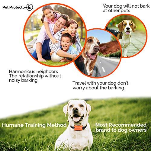 Pet-Protecto-Bark-Collar-New-Version-Humanely-Stops-Barking-with-Sound-and-Vibration-NO-Shock-Harmless-and-Humane-Small-Dog-Bark-Collar-Medium-Dog-Bark-Collar-0-0