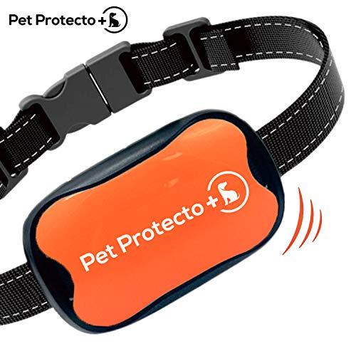 Pet-Protecto-Bark-Collar-New-Version-Humanely-Stops-Barking-with-Sound-and-Vibration-NO-Shock-Harmless-and-Humane-Small-Dog-Bark-Collar-Medium-Dog-Bark-Collar-0