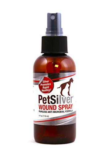 PetSilver-Wound-Spray-with-Chelated-Silver-Rapid-Healing-for-Hot-Spots-Cuts-Scrapes-Bacteria-Fungal-Infections-Dry-Itchy-Skin-Kills-a-Broad-Spectrum-of-Harmful-Bacteria-0