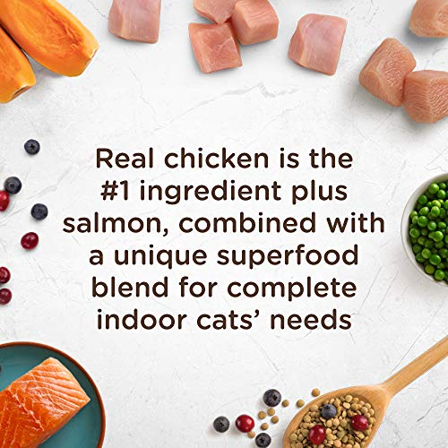Rachael-Ray-Nutrish-Indoor-Complete-Natural-Dry-Cat-Food-0-2
