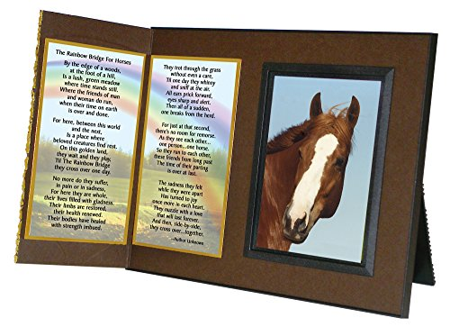 Rainbow-Bridge-for-Horses-Sympathy-Picture-Frame-Gift-and-Memorial-with-optional-custom-photo-editing-0