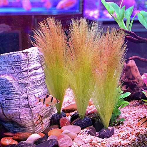 Smarlin-Artificial-Aquarium-Plants-Fake-Fish-Tank-Plastic-Plants-3-PCS-83-Inches-High-Soft-and-Non-Toxic-Safe-for-Fish-0-2