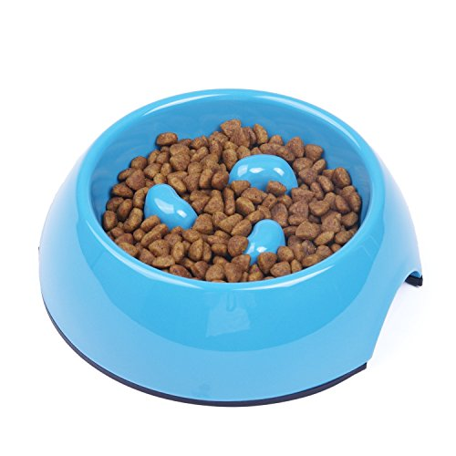 Super-Design-Interactive-Bloat-Stop-Anti-Gulping-Slow-Feed-Dog-Bowl-0