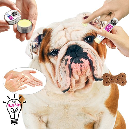 The-Blissful-Dog-Bulldog-Nose-Butter-0-2