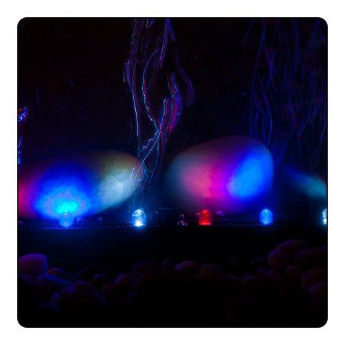 ViaAqua-6in-18-watt-Slow-Color-Changing-LED-Light-Airstone-0-1
