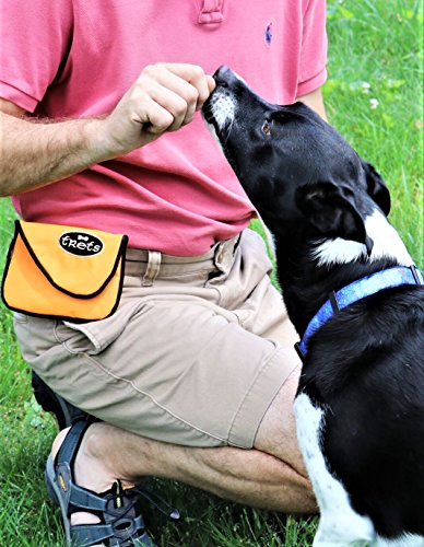 Woof-Hoof-Lime-Green-Magnetic-Dog-Cat-Treat-Pouch-Training-Rewards-Bag-For-Treats-Snacks-with-Belt-Clip-For-Small-n-Large-Pets-Professional-Quality-0-0