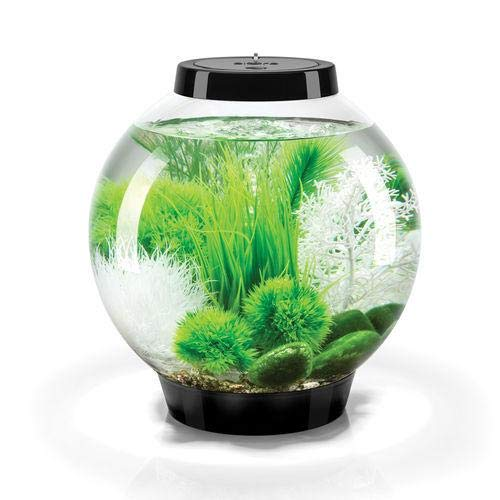 biOrb-Classic-15-Liter-Black-Aquarium-with-LED-and-Grass-Field-Dcor-Package-0