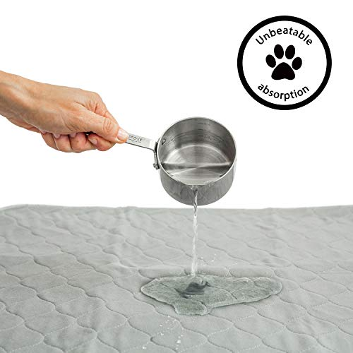 rocket-rex-Washable-Reusable-Pet-Training-and-Puppy-Pads-Waterproof-Leak-Proof-and-Absorbent-Whelping-Incontinence-Travel-Bed-Wetting-Mattress-Protector-0-1