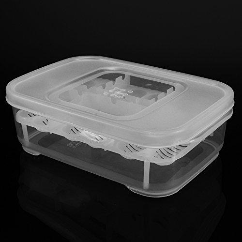 12-Reptiles-Eggs-Incubator-Tray-Gecko-Snake-Bird-Amphibians-Hatching-Case-Breeding-Tools-Box-0-0