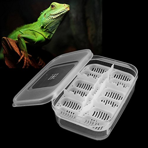 12-Reptiles-Eggs-Incubator-Tray-Gecko-Snake-Bird-Amphibians-Hatching-Case-Breeding-Tools-Box-0