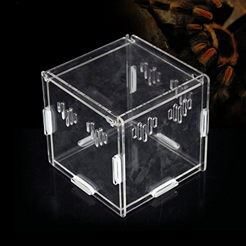 Acrylic-Transparent-Pet-Reptiles-Box-Breeding-Tanks-Container-For-Lizard-Chameleon-Spider-Snake-Other-Reptiles-0