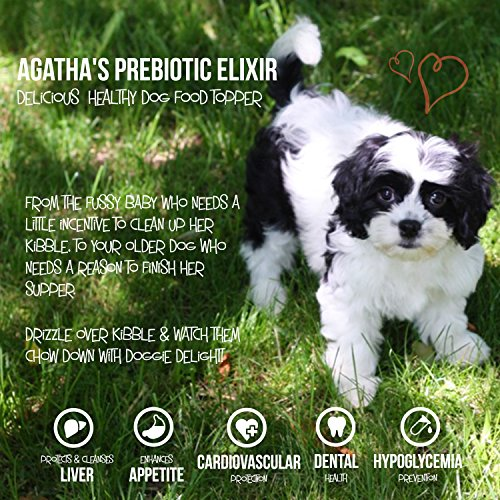 Agathas-Elixir-Prebiotics-for-Dogs–Appetite-Stimulant-for-Picky-Eaters-and-Senior-Pets–Green-Tea-Milk-Thistle-Boost-Immune-System-Liver-Detoxifier-0-2